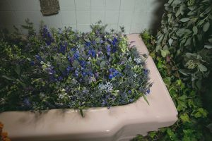 bathtubflowers