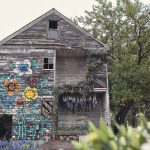 Thousands of Flowers Later and a Condemned House in Detroit is Completely Transformed