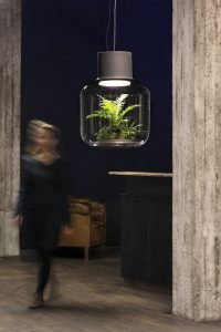 hangingplant_lamp4
