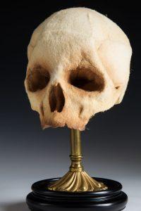 wool-skeletonface